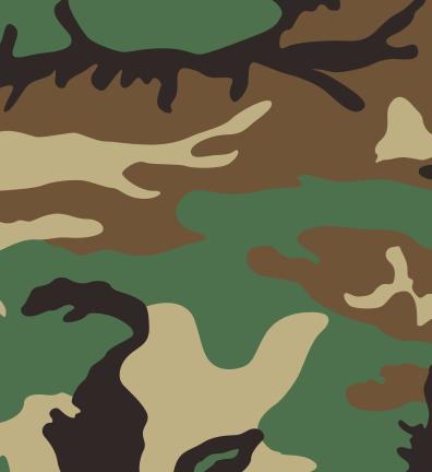 US-Woodland-camouflage
